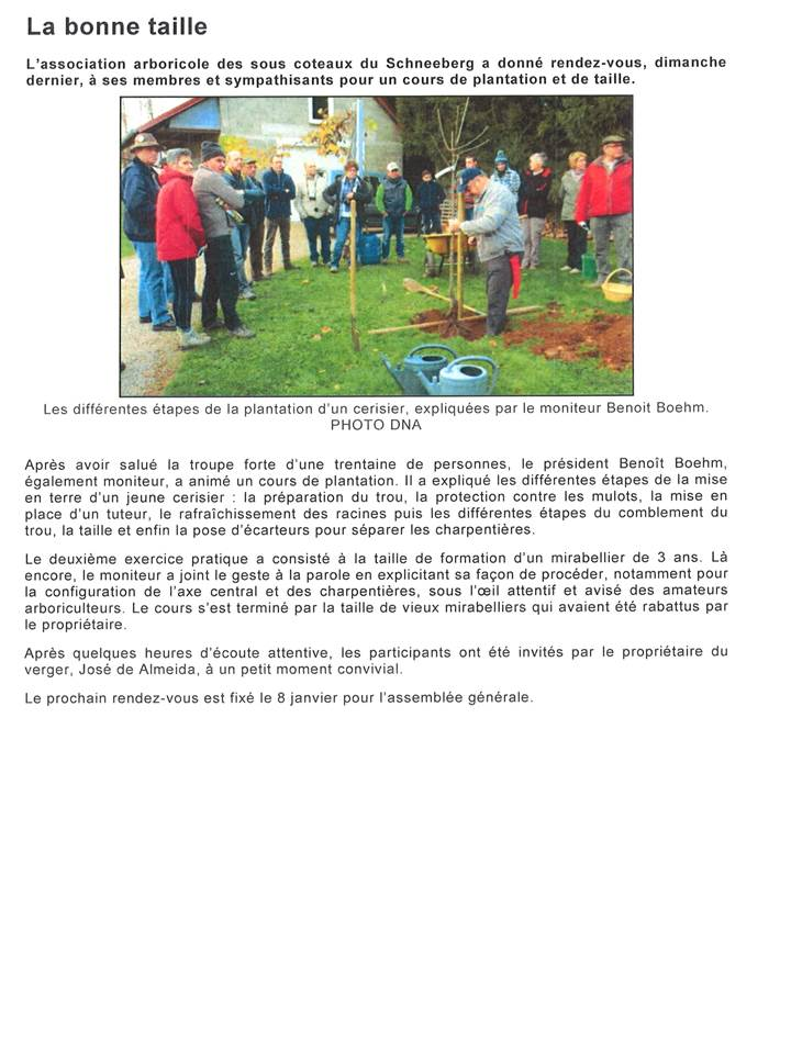 Article des DNA du 15/11/2015 à Allenwiller