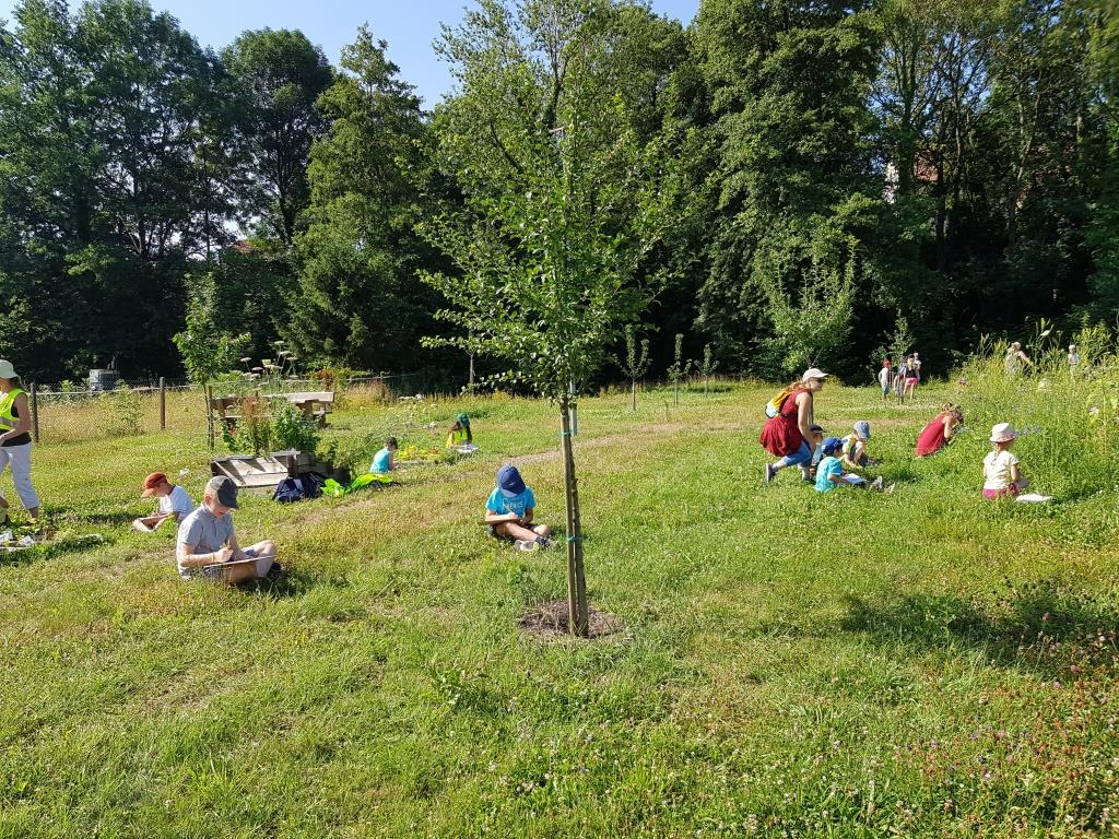 2018 07 02 Visite Ecole Cosswiller Verger Romanswiller07
