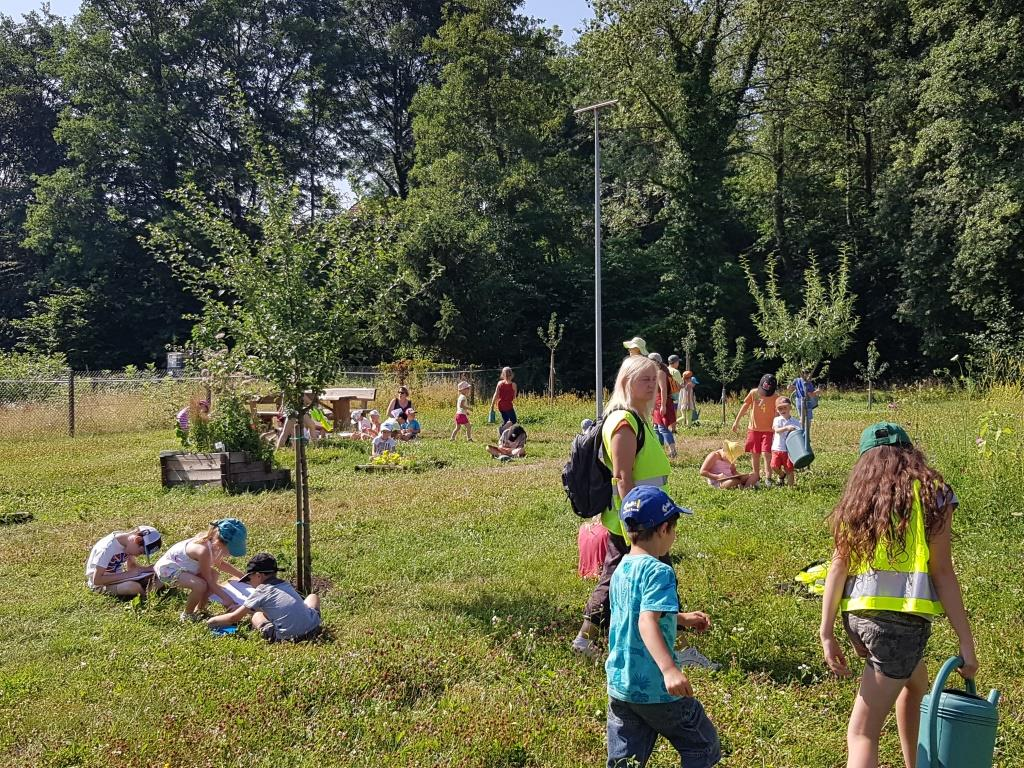 2018 07 02 Visite Ecole Cosswiller Verger Romanswiller12