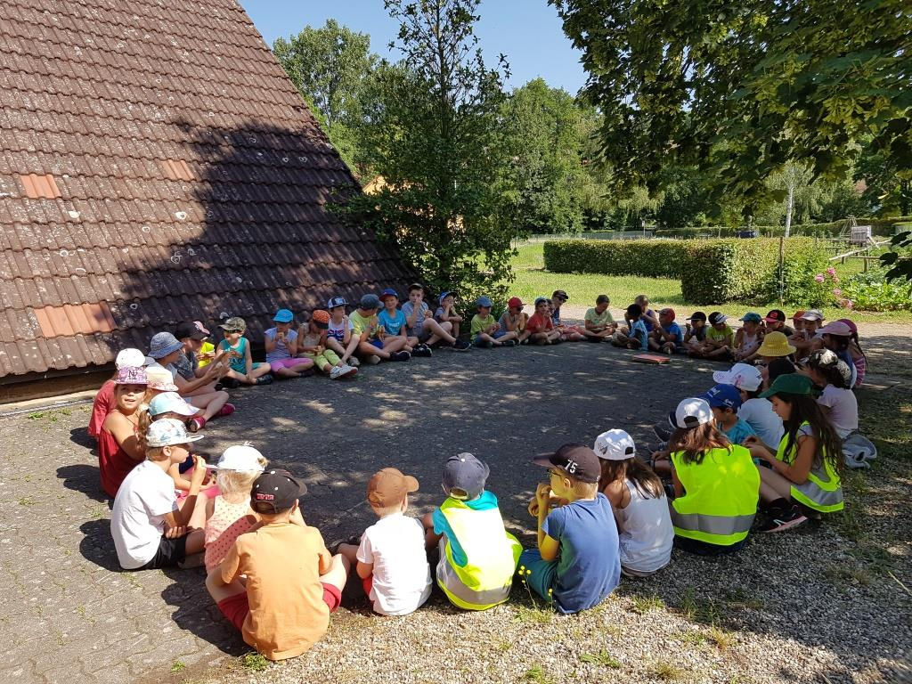 2018 07 02 Visite Ecole Cosswiller Verger Romanswiller17