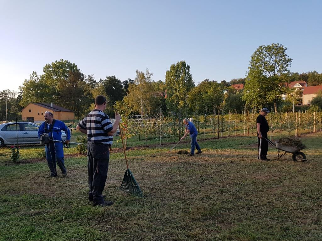 2018 09 19 Travaux Verger Ecole Romanswiller07