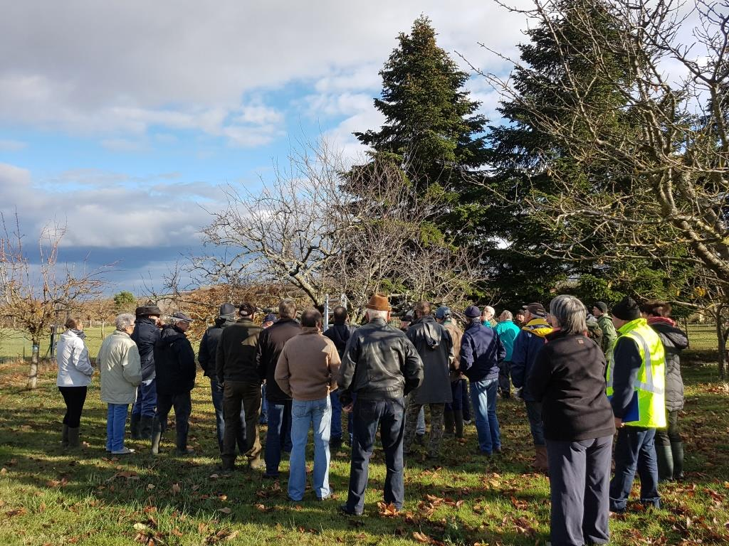 2018 11 24 Cours De Taille Dimbsthal03