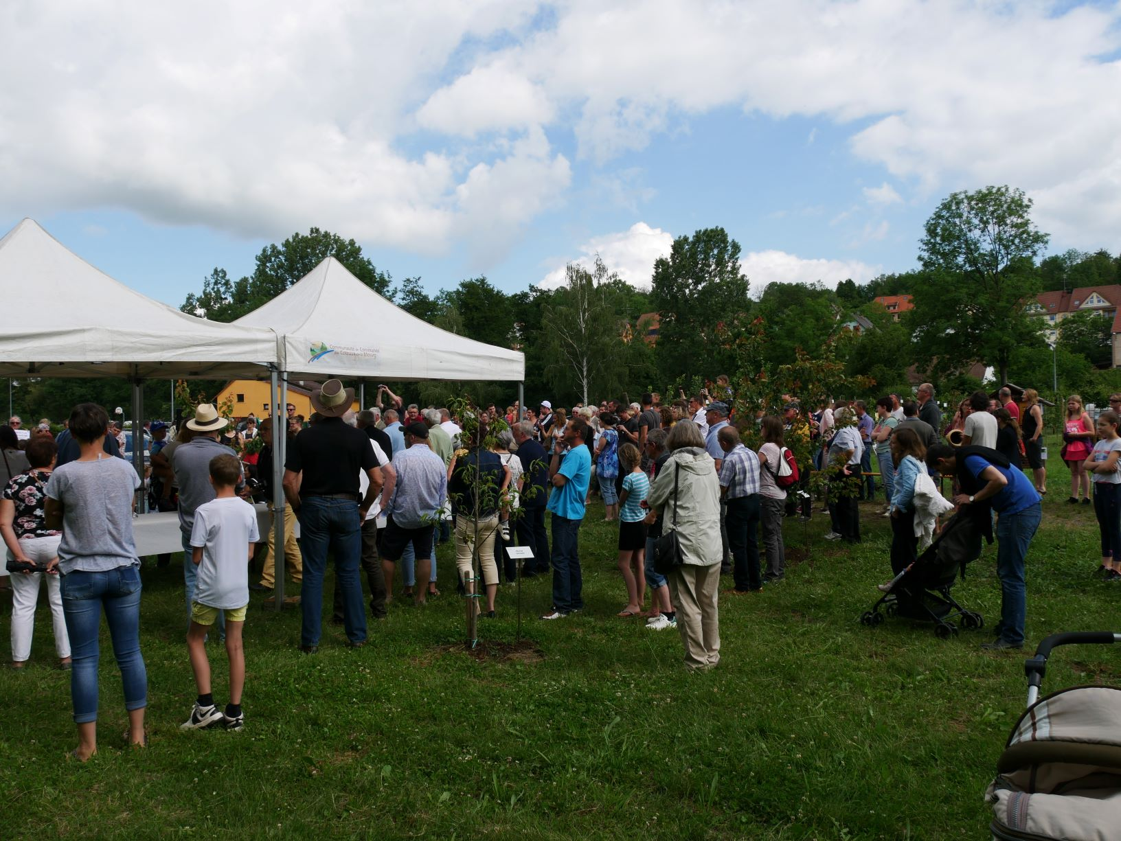2019 06 16 Inauguration Verger Ecole Romanswiller22