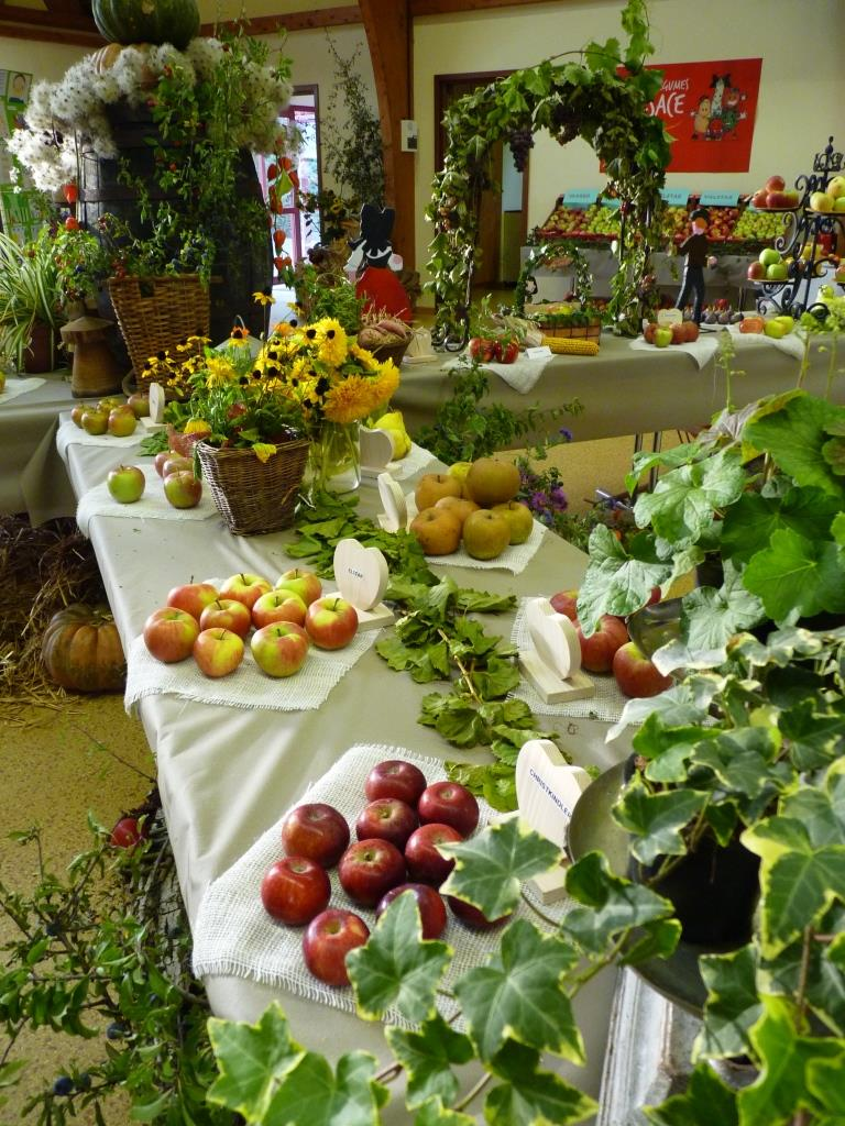 15 expo fruits Cosswiller 2015-09-26