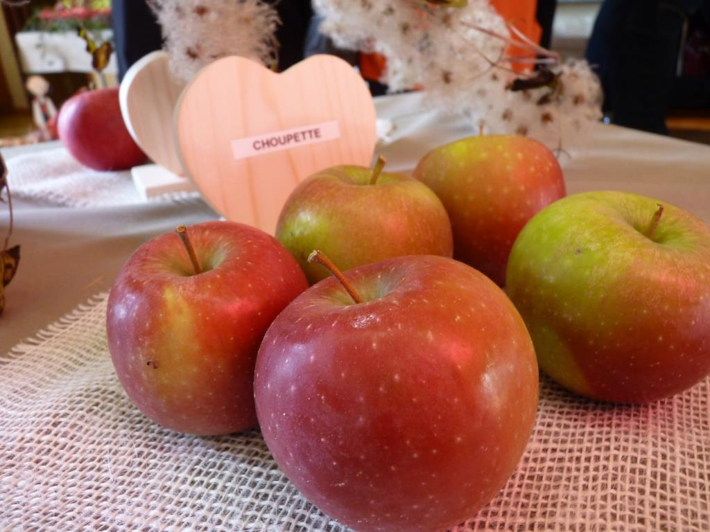 12 expo fruits Cosswiller 2015-09-26